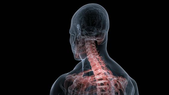 Valutazione dell'efficacia del trattamento osteopatico sul tratto cervicale con sensore S9